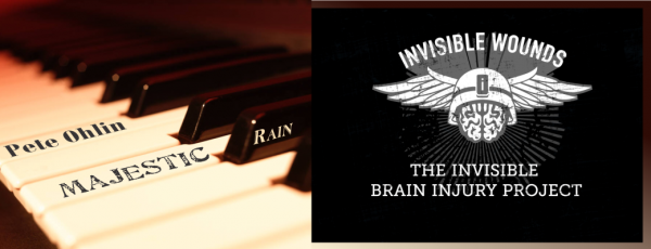 Invisible Brain Injury Project IDA Majestic Rain Fundraiser
