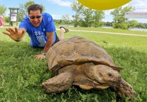 Aaron LaPedis with Giant Turtle at Colorado Autism Society Walk - Invisible Disabilities Association 2016 Volunteer Award Recipient