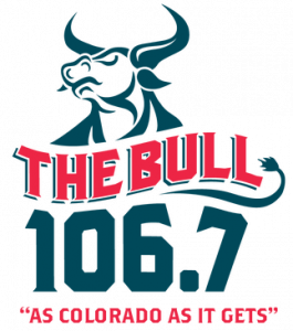 The Bull 106.7 - Denise Plante - 2020 Awards Gala - Invisible Disabilities Association